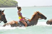 Horseback Ride & Swim
