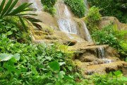 Konoko Gardens
